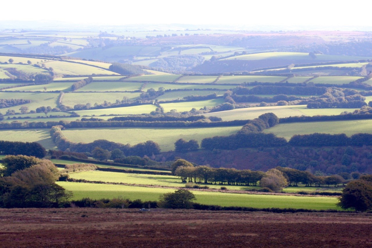 exmoor-fields