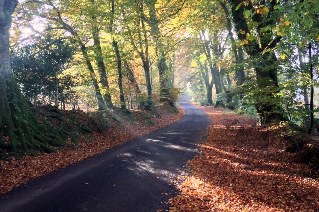 challick-lane